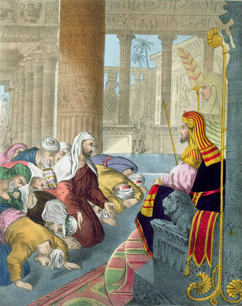 Palace Drawing - Joseph Receiving The Homage by Siegfried Detler Bendixen