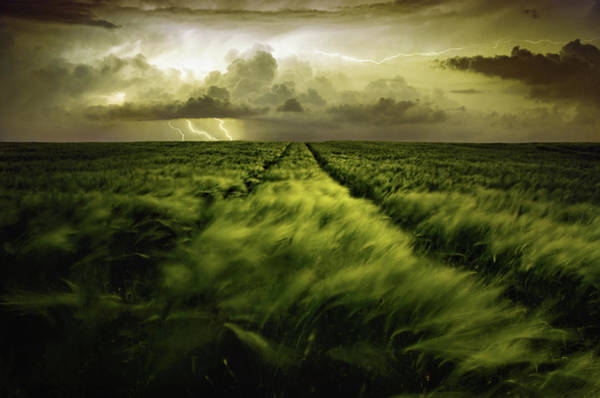 Dark Green Wall Art - Photograph - Journey To The Fierce Storm by Sona Buchelova