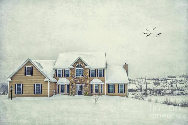 Country House Photograph - Joyless Trance Of Winter by Evelina Kremsdorf