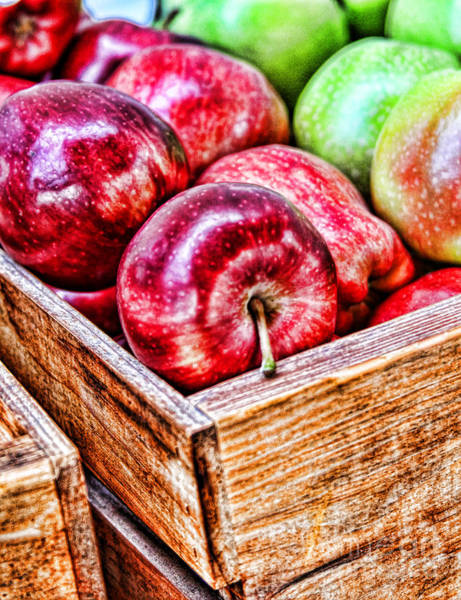Photograph - Juicy Apples By Diana Sainz by Diana Raquel Sainz