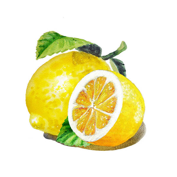 Wall Art - Painting - Juicy Tasty Lemon by Irina Sztukowski