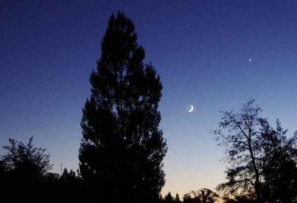 Photograph - Julian Night Sky 2013 A by Phyllis Spoor