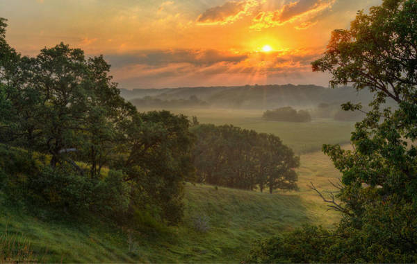Photograph - July Morning Along The Ridge by Bruce Morrison