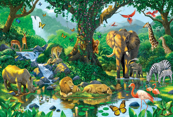 Orangutan Photograph - Jungle Harmony by MGL Meiklejohn Graphics Licensing
