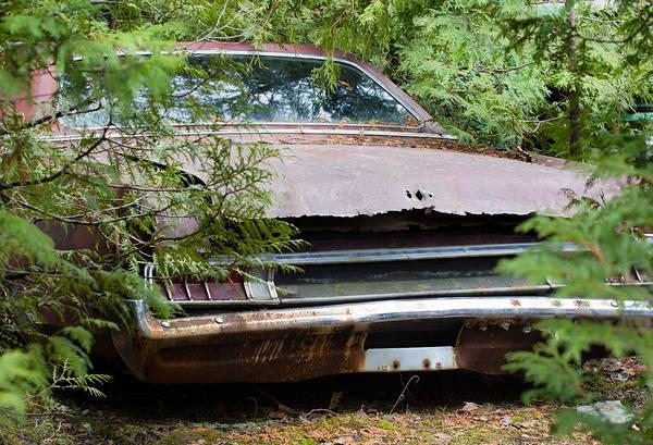 Wrecking Yard Photograph - Junk Car by Nick Mares