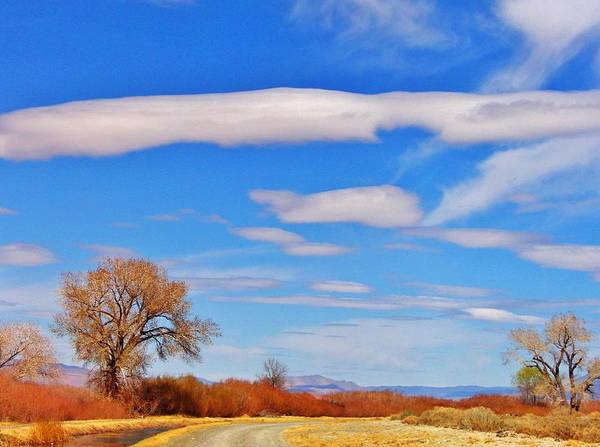 Bishop Hill Photograph - Just Lovely by Marilyn Diaz