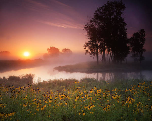 Photograph - Just The Right Moment by Ray Mathis
