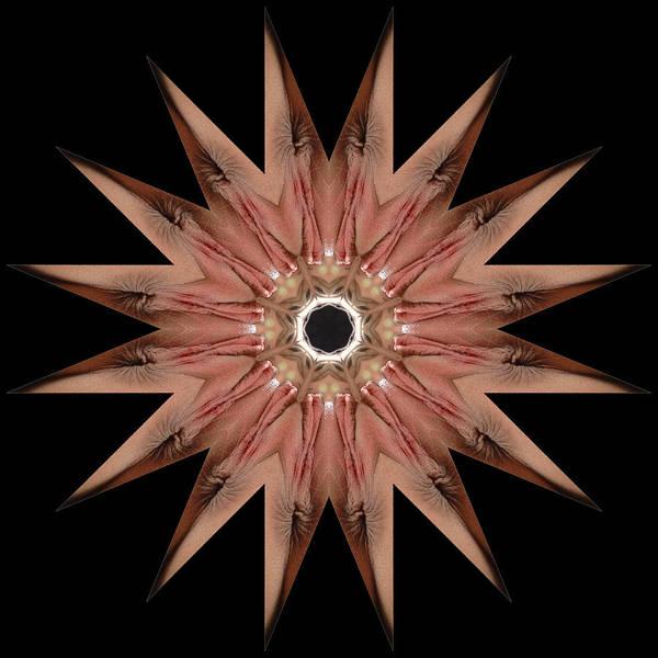 Photograph - K8985b Sexual Mandala For Erotic Spirituality by Chris Maher
