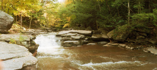 Catskill Photograph - Kaaterskill Falls Stream by Panoramic Images