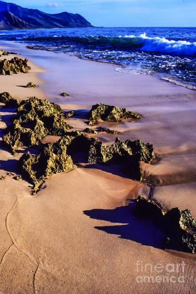 Kaena Photograph - Kaena Point State Park by Thomas R Fletcher