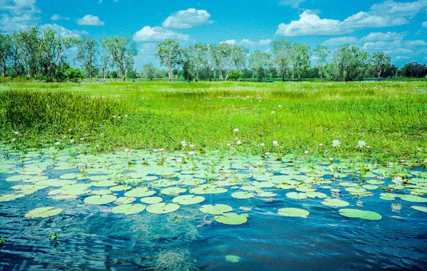 Photograph - Kakadu National Park In Australia by Pete Hendley