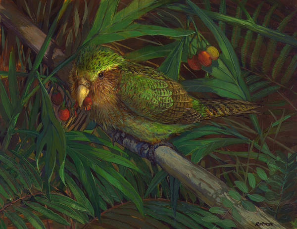 Kakapo Nighttime Feeding Art Print by ACE Coinage painting by Michael Rothman