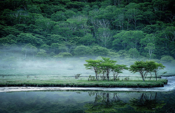 Asian Photograph - Kakumanbuchi Marsh by Teruo Araya