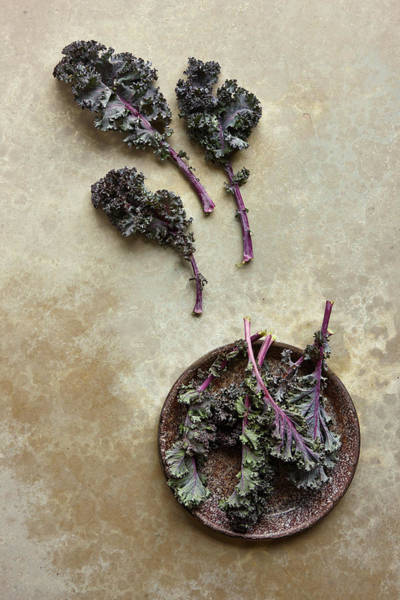 Healthy Eating Photograph - Kale by Lew Robertson
