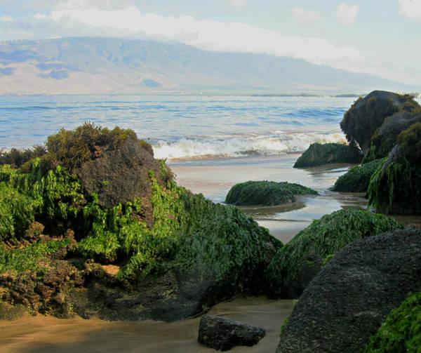 Photograph - Kalepolepo Beach  by Marilyn Wilson