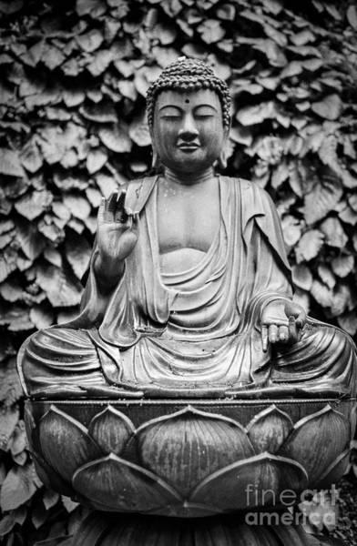 Kamakura Wall Art - Photograph - Kamakura Buddha Ix by Dean Harte