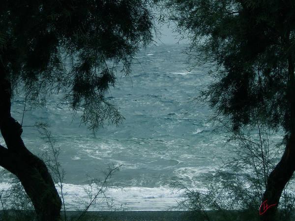 Photograph - Kamari Ocean Trees Santorini Island Greece  by Colette V Hera  Guggenheim