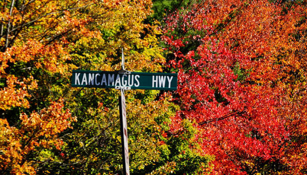 Photograph - Kancamagus Scenic Byway by Luke Moore
