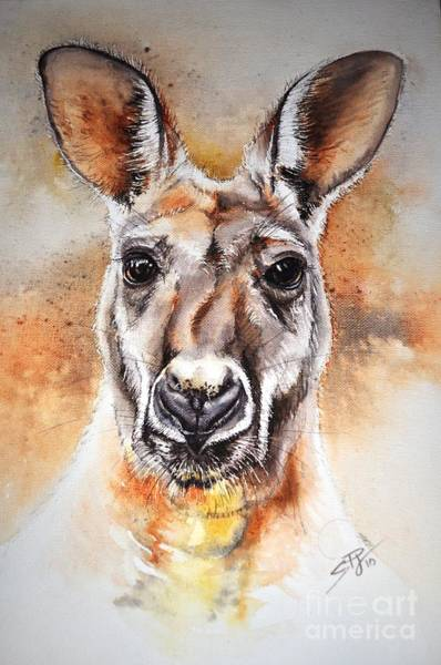 Skippy Wall Art - Painting - Kangaroo Big Red by Sandra Phryce-Jones