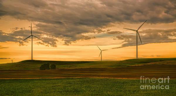 Photograph - Kansas Sentinels by Jon Burch Photography