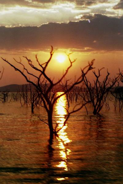 Photograph - Kariba Sunset by Jeremy Hayden