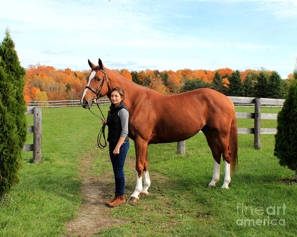 Photograph - Katherine Pal 11 by Life With Horses
