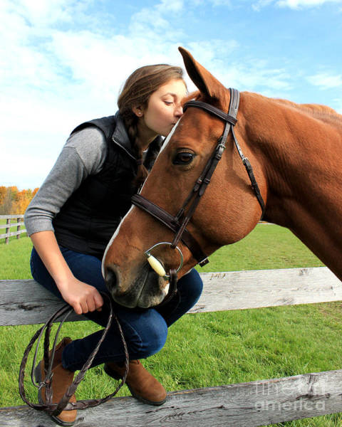 Photograph - Katherine Pal 14 by Life With Horses