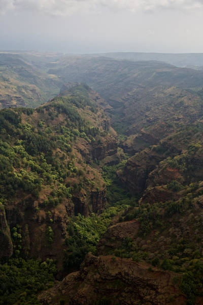 Photograph - Kauai Canyon Vistas by Steven Lapkin