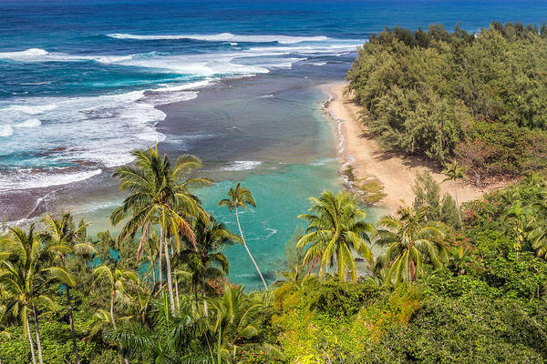 Photograph - Kauai Tropical Paradise by Pierre Leclerc Photography