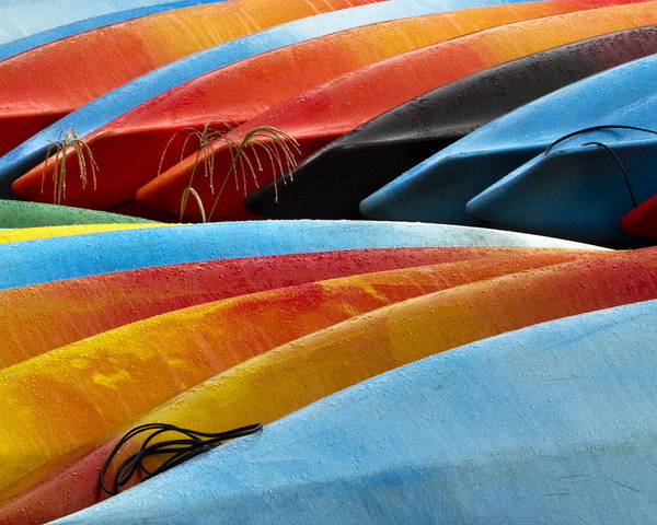 Swan Boats Photograph - Kayak Kaleidoscope by Carl Jacobs