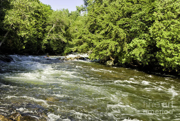 Photograph - Kayaking On Gull River by Les Palenik