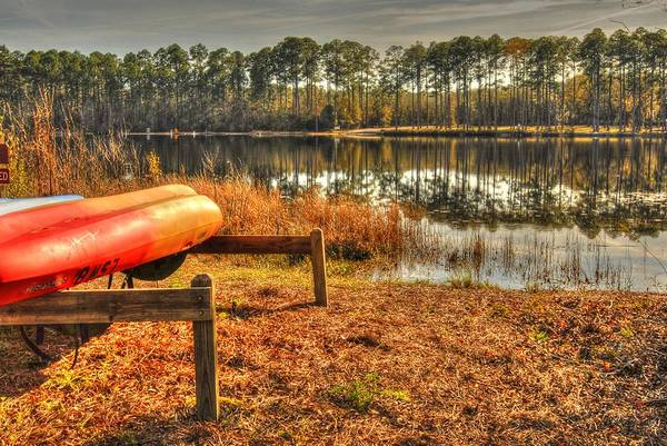 Photograph - Kayaks 001 by Donald Williams