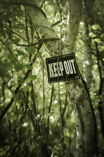 Photograph - Keep Out Island by Trish Mistric