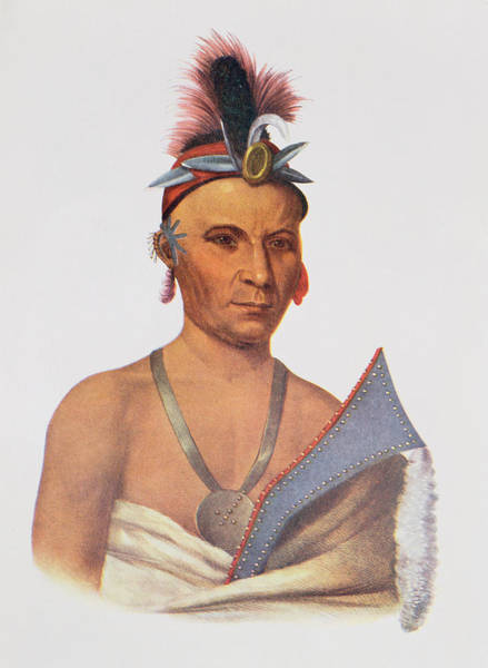 Headdress Photograph - Keesheswa Or The Sun, A Fox Chief, C.1837, Illustration From The Indian Tribes Of North America by Charles Bird King