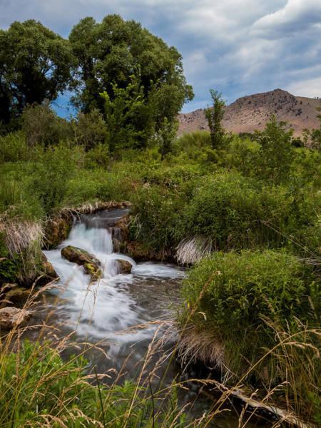 Photograph - Keith Memorial Cascade Falls Black Hills South Dakota II by Patti Deters