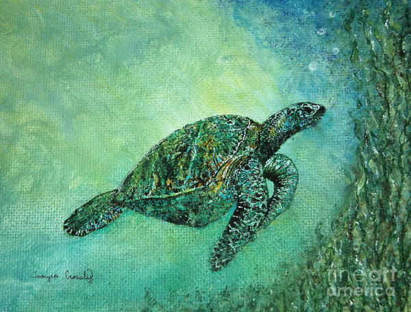 Painting - Kelp Forest Sea Turtle by Tamyra Crossley