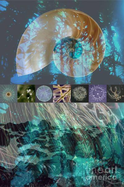 Free Dive Wall Art - Digital Art - Kelp Forest by Ursula Freer