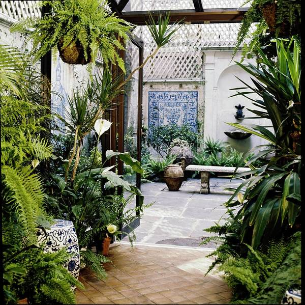 Trellis Photograph - Kenneth Jay Lane's Winter Garden by Horst P. Horst