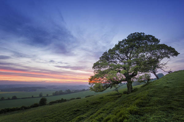 English Countryside Photograph - Kent Countryside by Ian Hufton