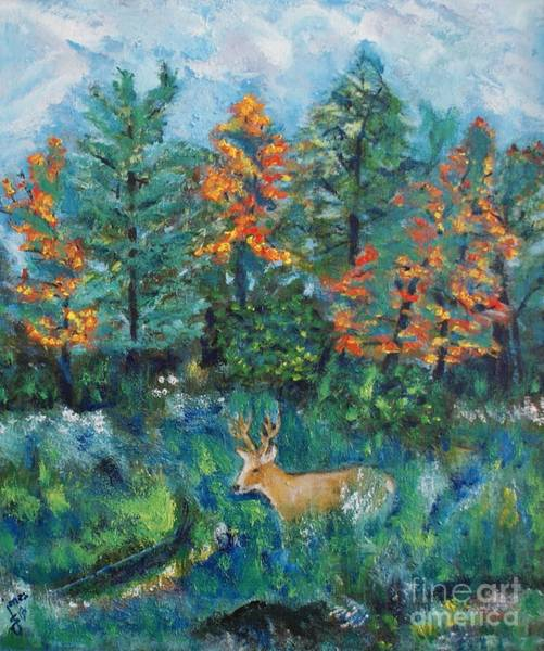 Painting - Kentucky Buck by Shelley Jones