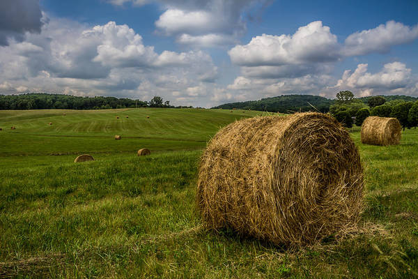 Photograph - Kentucky - Hay Field by Ron Pate