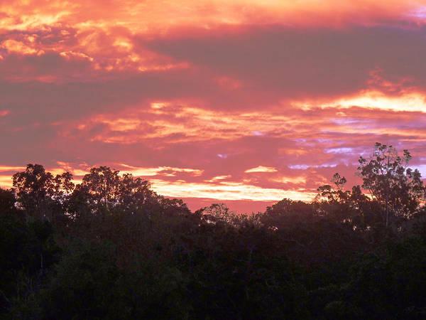 Photograph - Kenya Sunset by Tony Murtagh