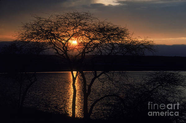 Photograph - Kenyan Sunset by Gregory G. Dimijian, M.D.