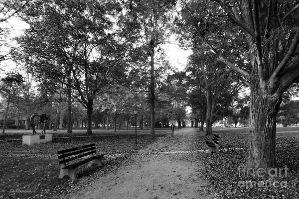 Photograph - Kenyon College Middle Path by University Icons