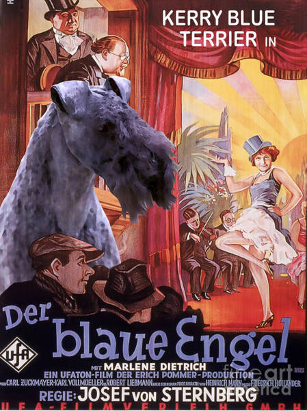 Engels Painting - Kerry Blue Terrier Art Canvas Print - Der Blaue Engel Movie Poster by Sandra Sij