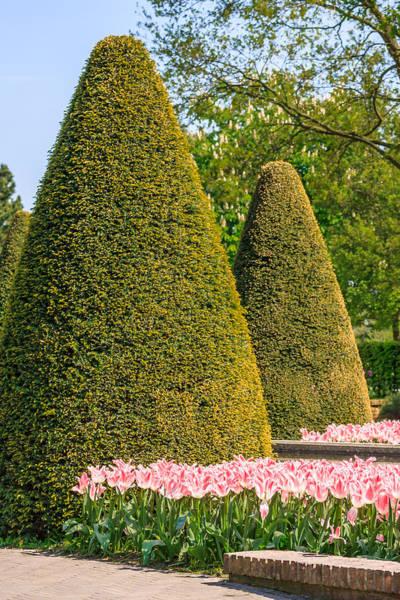 Photograph - Keukenhof Gardens by Susan Leonard