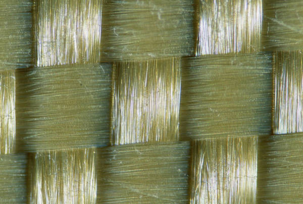 Synthetic Photograph - Kevlar Fibres by Sinclair Stammers/science Photo Library