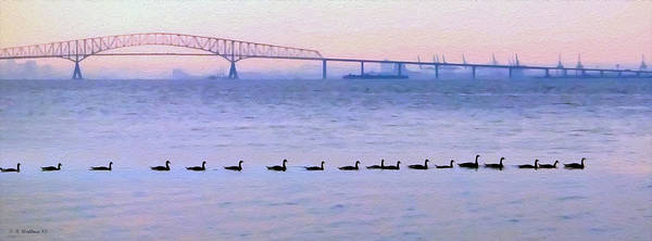 Sfx Photograph - Key Bridge And Waterfowl by Brian Wallace