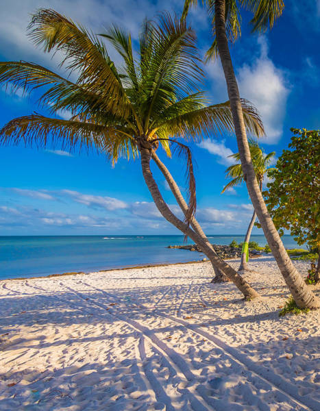 Photograph - Key West Florida by Robert Bellomy