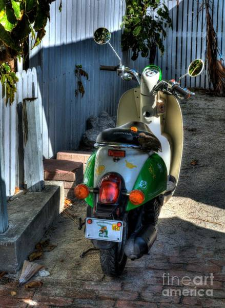 Photograph - Key West Scooter by Mel Steinhauer
